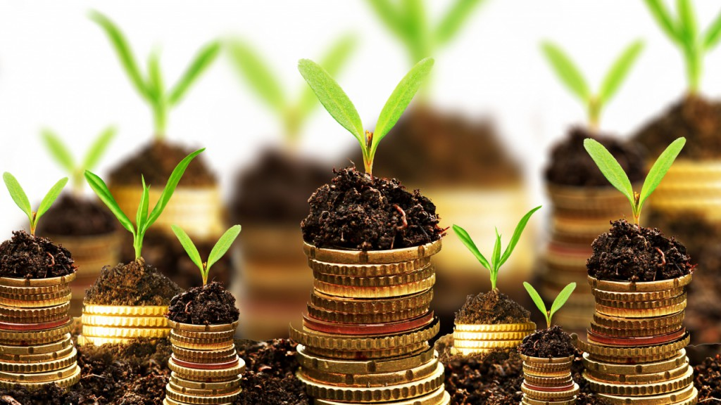 growing-money-web-header